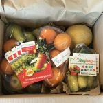 fruitybag-fruitbox