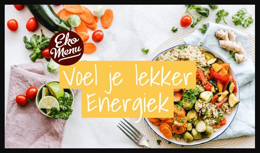 ekomenu voel je lekker energiek meer weerstand maaltijdbox